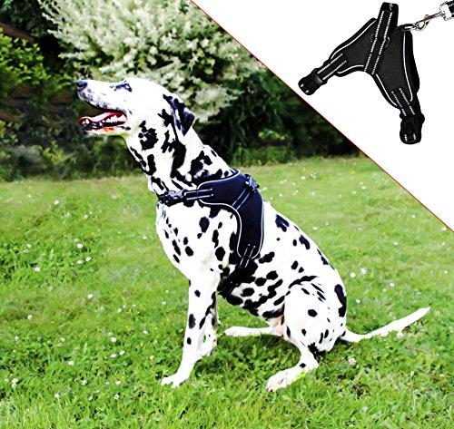 Molosser Hundegeschirr für Kleine Mittelgroße Große Hunde und Welpen, Reflektierend Brustgeschirr...