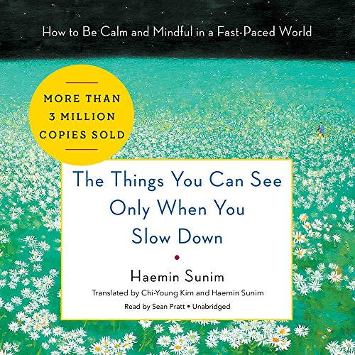 The Things You Can See Only When You Slow Down: How to Be Calm and Mindful in a Fast-Paced World - Library Edition
