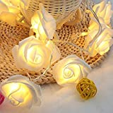 CurioCity Soft Warm White Rose Flower Fairy String Lights with 20 LED bulbs, Battery Powered, for Indoor, Party, Patio, Wedding, Bedroom, Romantic, Festive Celebrations