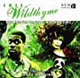 Devil in Ms Wildthyme (Big Finish Iris Wildthyme)