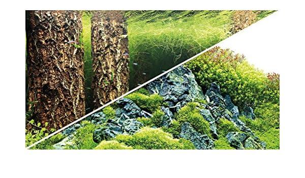 Blu oltremare Hobby Foto Pannello posteriore zuschnitt Piante 8