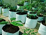 #9: LARGE & BEST POLY GROW BAGS, UV Treated, 100% Virgin Polyethyene Material – Thick, Durable, Portable and Last Longer, Perfect for Terrace, Balcony, Any Small Space, Professional Looking White Outside, Black Inside, 20 bags
