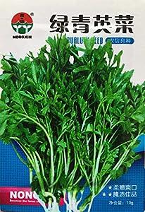 envío de medicinas: 10g paquete original vegetal Vegetable Seeds Lepidium sativum cuidado L.Health v...