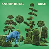 Bush - vinile blu