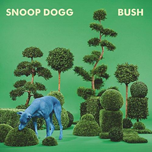 bush-vinilo