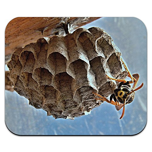bee-wasp-hornet-and-nest-hive-mouse-pad-mousepad