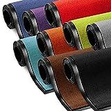 Schmutzfangmatte ColorLine | viele Größen und Farben zur Auswahl | Fußmatte für Innenbereich | Mono Color Silbergrau 60x180 cm