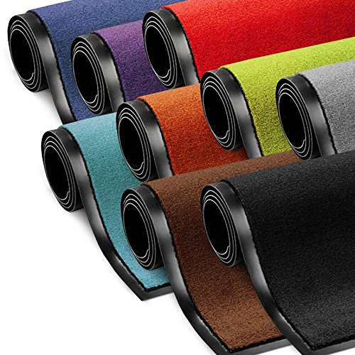Schmutzfangmatte ColorLine | viele Größen und Farben zur Auswahl | Fußmatte für Innenbereich |...