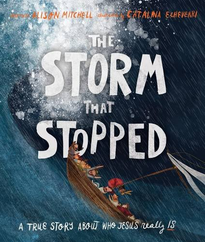 The Storm That Stopped por Alison Mitchell