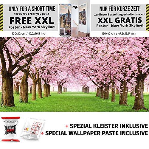 kirschbaum-fototapete-wald-mit-kirschbaumen-fruhling-rosa-tapete-wandbild-baume-lichtung-allee-wald-