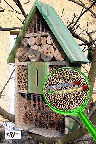 Insektenhotel LOTUS + 2 x Sichtglas + Marienkäferhaus + Schmetterlingshaus, XXL moosgrün grün für Nützlinge Biogarten Nistkasten Schmetterling...