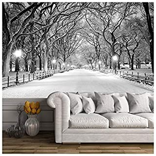 azutura Central Park New York Wall Mural Black & White Photo Wallpaper Winter Tree Decor available in 8 Sizes X-Small Digital