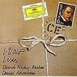 Wolf : Lieder (Coffret 6 CD)