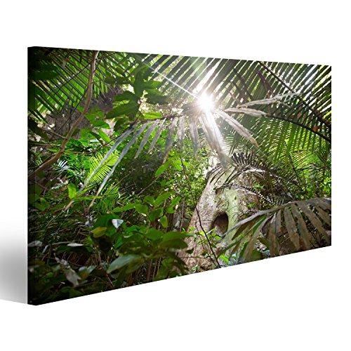 islandburner Bild auf Leinwand Sonnenlicht im Dschungel von Ponmudi Park in Kerala, Indien Wandbild, Poster, Leinwandbild FJM