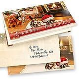 Weihnachtskarten Klappkarten Drollige Hunde 50 Sets geschäftlich selbst bedrucken