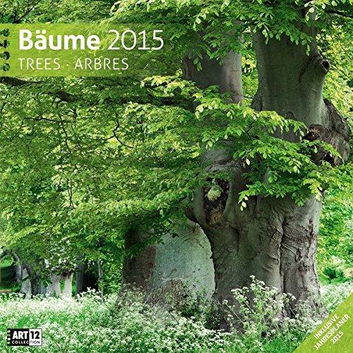 Bäume 30 x 30 cm 2015