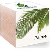 Feel Green Feel Green EcoCube Palme, Pflanze mit Samen aus ökologischer Edel-Holzbox als Geschenk für Zuhause, Einweihungsgeschenk für Frauen und Männer, Deko Geschenkidee