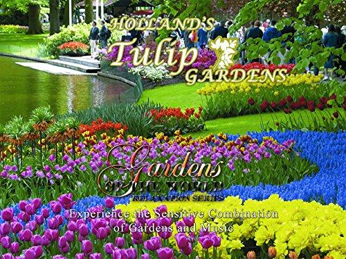 Holland's Tulip Gardens (Home Global)