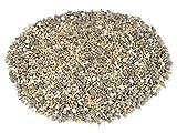 NaDeco Muschelmix Mini 1kg ca. 0,5-2cm kleine Bastelmuscheln