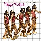 Pave The Way [Vinyl LP] -