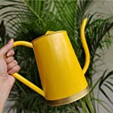 ecofynd 2 Litre Garden Watering Can for Plants with Long Spout, Color - Shine, Size - WC3: 2 L with spout