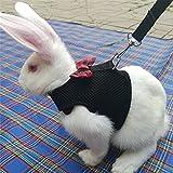 Gluckliy Weichem Mesh Komfort Gepolsterte Weste Leinen für Welpen Katze Kaninchen (L, Schwarz)