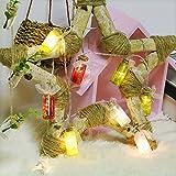 ELINKUME LED String Light 10LED Wish Bottle Fairy Light, 2M Length Beautiful Bottle with Good Wishes for Wedding, New Year, Christmas, Birthday Party (RGB, 2 Modes)