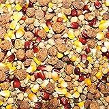 25kg CarpXL Karpfen Partikel-Mix mit rotem und gelben Mais