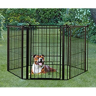 Carlson Pet Products Weatherproof Outdoor Super Gate 61evjxqdCCL