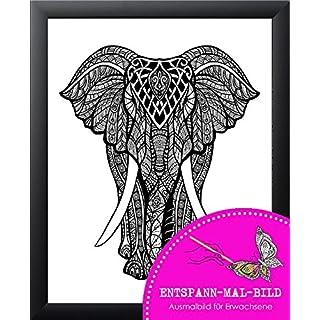 artissimo, Neuheit, Entspann-Mal-Bild gerahmt, 46x56cm, PE6025-ER, Elefant, Malen für Erwachsene, Bild Zum Ausmalen inkl. Rahmen