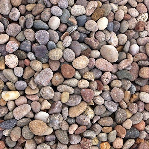 chas-long-sons-scottish-pebbles-20-30mm-25kg-bag