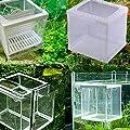 Xiton Applikation Jardin Kunststoff Rahmen Ablaichkasten Züchter für Aquarium, Weiß