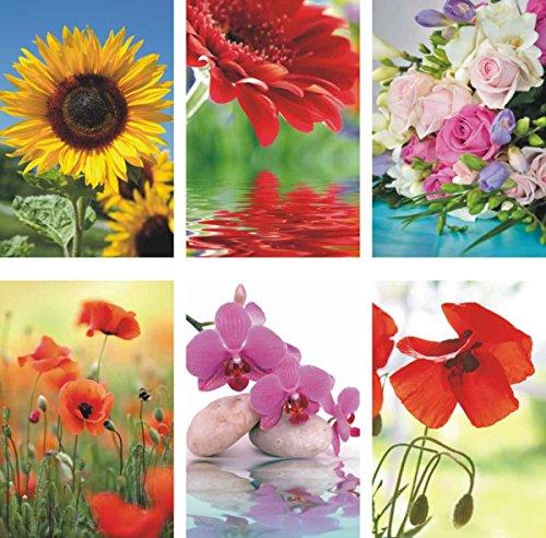 50 Grußkarten Blumen neutrale Glückwunschkarten Klappkarten Hüllen 991-5404 (Grußkarte Blume)