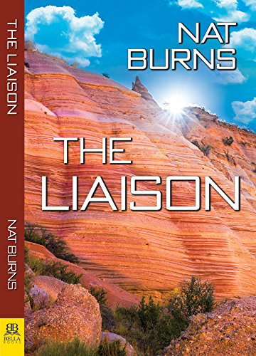 The Liaison: Book One in the Desert Willow Series (English Edition) -