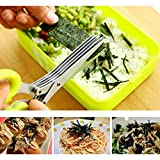 #8: Multi-functional Stainless Steel Kitchen Knives 5 Layers Scissors Sushi Shredded Scallion Cut Herb Spices Scissors Cooking Tools