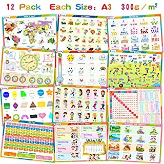 12 Educational Preschool Posters For Toddler Learning - Classroom, Nursery and Homeschool - Decorations and Poster Supplies For Teachers – Times Tables 1 to 12, World Map and more - A3 Size, 300gsm