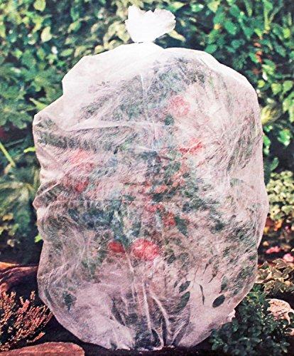 Plantes d'hiver non-tissé Frost non-tissé Protection d'hiver pour plantes en pots Betterave 0,75 x 10 m (Schlauch)