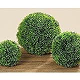 Esfera de hierba Decoración terraza o vivienda