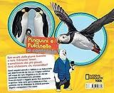 Pinguini-e-pulcinelle-a-confronto