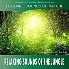 Relaxing Sounds of the Jungle (Sounds of Nature)