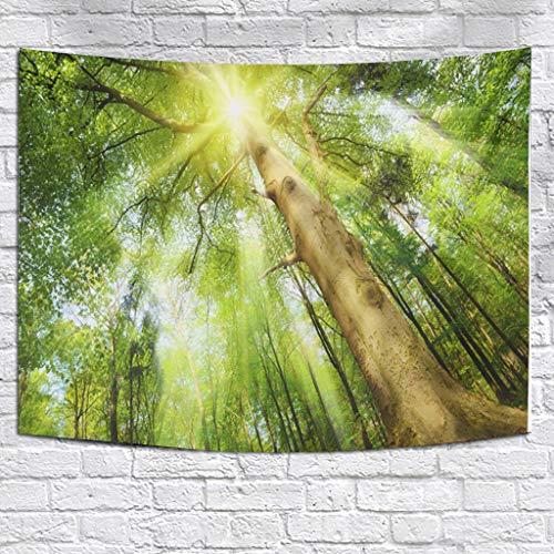 TianranRT Misty Forest Tapestry Wall Hanging Nature Landscape Arazzo Sunshine attraverso gli degli alberi per il soggiorno camera da letto,tappezzeria(150x200),Tessili per la casa,Multicolore(C)