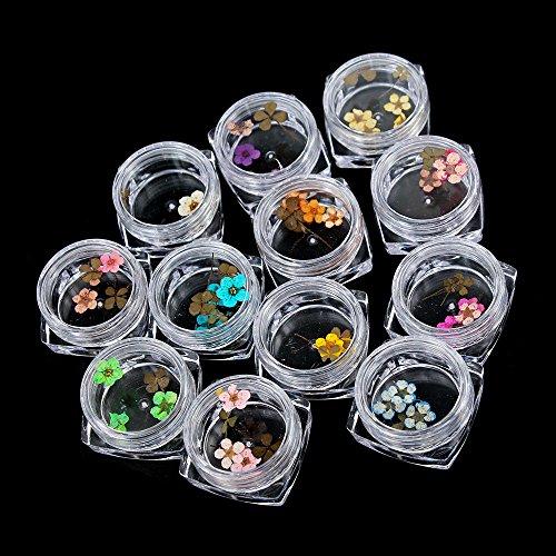 TENGGO 12 Farbe Wahrheit Blume Nagelkunst Dekoration 3D Trockene Getrocknete Blumen Aufkleber DIY Maniküre Werkzeuge