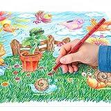 Noris Club colouring pencils 144 NC24, Pack 24 Assorted Bild 6