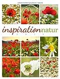 Inspiration Natur 2019, Wandkalender im Hochformat (50x66 cm) - Inspirations- / Naturkalender mit Bildmosaik im Triplet-Stil mit Monatskalendarium - Ackermann Kunstverlag