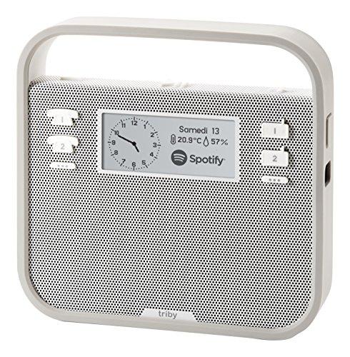 triby-enceinte-connectee-portable-et-intelligente-gris