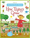 My First Book About How Things Grow Sticker Book (My First Books)