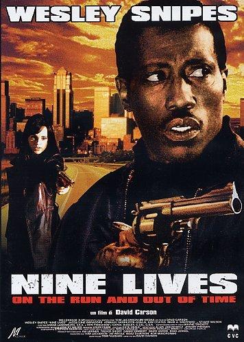 nine-lives-import-italien