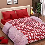 Cortina Cotton AC Double Dohar, D Red