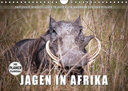 Emotionale Momente: Jagen in Afrika. (Wandkalender 2017 DIN A4 quer): Für viele...