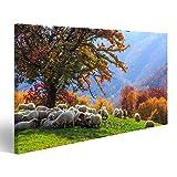islandburner Bild Bilder auf Leinwand Baum, Schaf, Shepardhund in der Herbstlandschaft in den rumänischen Karpaten Wandbild, Poster, Leinwandbild JJL
